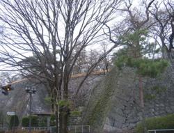 Iwatezyo